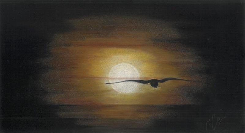 jennati-art-sunsetfly