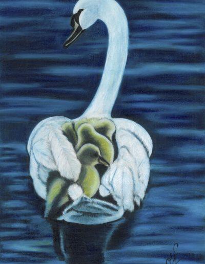 jennati-art-swan2